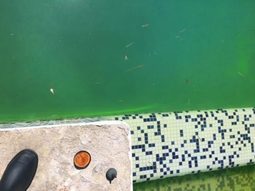 Recherche Fuite Piscine Fluoricine - Golfe Detection